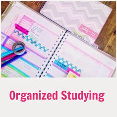 Organized Charm: Organized Studying