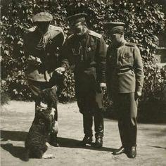Tsar Nicholas ll of Russia with Tsarevich Alexei Nikolaevich Romanov of Russia and Joy.A♥W