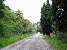 Bramasole (Κορτόνα, Ιταλία) - Κριτικές - TripAdvisor