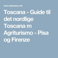 Toscana - Guide til det nordlige Toscana m Agriturismo - Pisa og Firenze