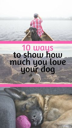 10 ways to give your dog all the love he gives to you!