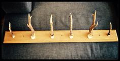 DIY - coat rack that i made out of roe buck antlers Diy Coat Rack, Coat Hooks, Antlers, Making Out, Hair Accessories, Diy Projects, Crafts, Living Room, Decor