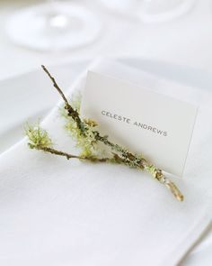 No need for flowers.  This mossy and lichen rich branch is the perfect addition to the uber simple place setting