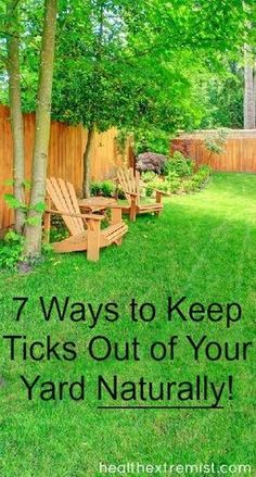 7 Ways to Keep Ticks Out of Your Yard Naturally- This is everything I'm doing to eliminate ticks from my yard.