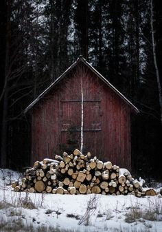 Not my circus . not my monkeys Not My Circus, Light Film, Got Wood, Ivy House, Photography Camera, Amazing Photography, Winter Wonder, Cabins In The Woods, The Ranch