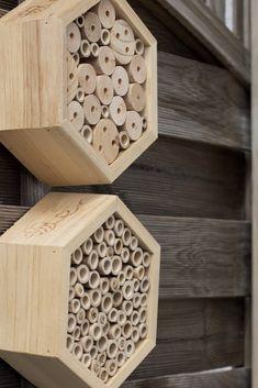Ein Bienenhotel für Anfänger - Landkindleben