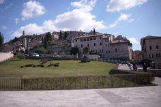 Prettiest town in Italy- Assisi