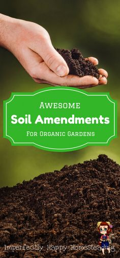 Awesome Soil Amendments for Your Organic Vegetable Garden - what to add to your soil for a healthier garden and you!