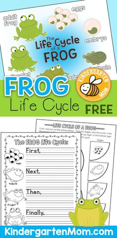 Free Frog Life Cycle Printables from Kindergarten Mom!  Includes Frog Life Cycle Chart, Worksheets, Life Cycle Wheel, Writing Prompts and more! https://kindergartenmom.com/science-printables/life-cycle-printables/frog-life-cycle-printables/?utm_campaign=coschedule&utm_source=pinterest&utm_medium=Preschool%20Kindergarten%20Mom&utm_content=Frog%20Life%20Cycle%20Printables