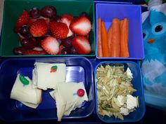 Kid Bento Lunch -Strawberries and Grapes -Carrot Sticks -Applesauce -Turkey and Provolone Rolls -Dill and Feta Orzo