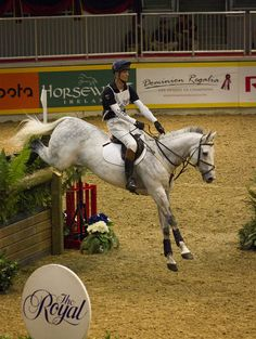 William Fox-Pitt's first visit to Canada, at the Royal Winter Fair