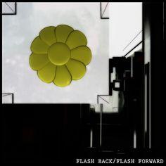 Flash back/ Flash forward