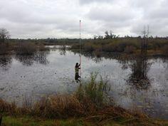 Caleb Matthews in the swamp!