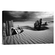 Global Gallery 'Konfrontation' by Dmitry Kulagin Photographic Print on Wrapped Canvas Size: