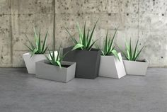 geometric planter boxes - LOVE