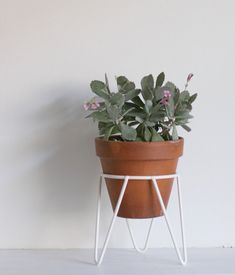 Hey, I found this really awesome Etsy listing at https://www.etsy.com/listing/200591620/white-metal-wire-plant-stand-mid-century