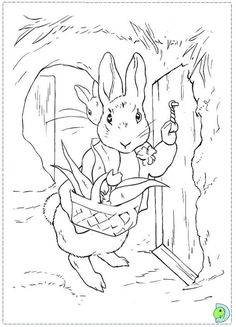 Peter Rabbit Coloring Pages Book