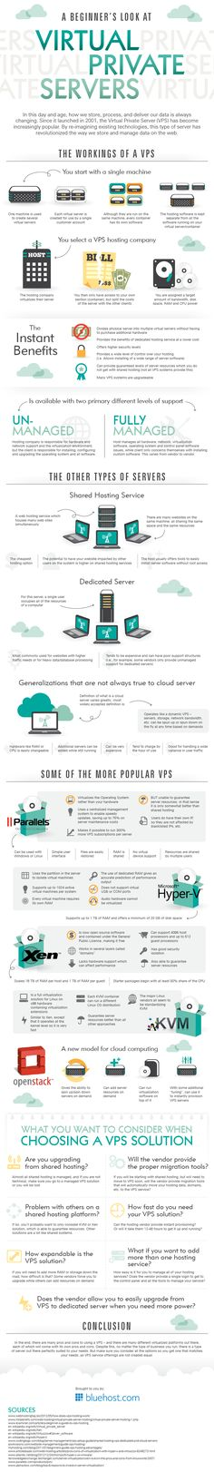 A Beginners Look At Virtual Private Servers | Infographics Display