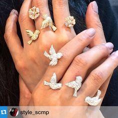 Wendy Yue bird rings