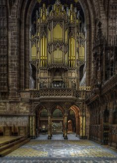 Chester Cathedrals Giant Organ!