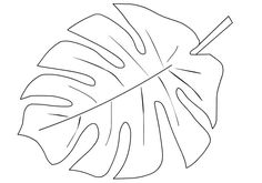 Coloring Pages Of Leaves Printable Tropical Leaf Shape Page