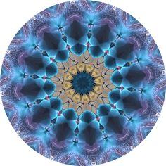 AUSTAUSCH Happy Birthday, Mandalas, Astrology Signs, Fish, Stars, Happy Anniversary, Happy B Day, Urari La Multi Ani
