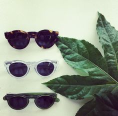 ORUM sunglasses, now available at the Kuwaii store!