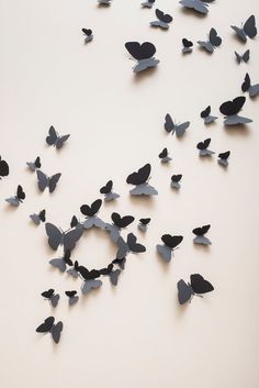 Slate grey butterfly wall decals