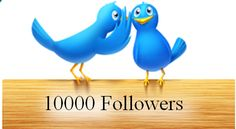 Mass Followers Twitter Script for 1000 Twitter Followers Daily #talktohacker