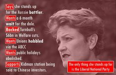 Pauline Hanson doesn't care about her support base. She does care about supporting the rich though, & supporting her pay packet! Pauline Hanson, Australian Politics, Stand Up, Don't Care, Facts, Election 2013, Sayings, Quotes, Base