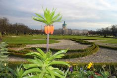 Paleistuin Slot Charlottenburg