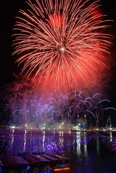 Marina Bay New Year 2009 Fireworks