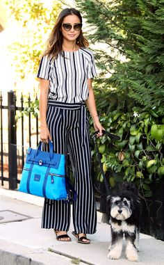 Stripes on Stripes from Celebrity Street Style  Jamie Chung gets bold with a striped ensemble and aHenri Bendel jetsetter backpack, but her best accessory is clearly her sweet pup, Ewok.