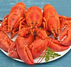 How to Cook one Succulent Lobster!