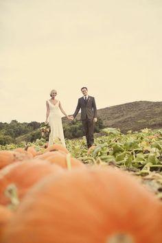 Photography by www.wildflowersphotos.com