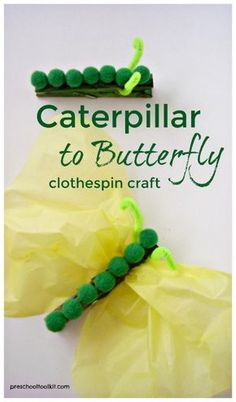 caterpillar to butterfly craft for kids crafts preschool Transform the Fuzzy Caterpillar into a Beautiful Butterfly Easy Crafts For Kids, Toddler Crafts, Creative Crafts, 5 Year Old Crafts, Garden Crafts For Kids, Quick Crafts, Simple Crafts, Craft Activities, Preschool Crafts