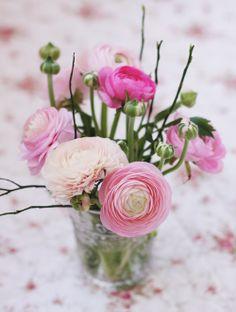 Die hübschesten Blumen. Ranunkeln.