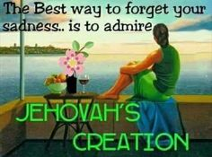 Admire Jehovah's creation