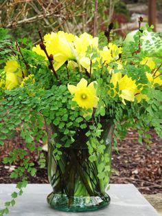 SLOW FLOWERS: Week 6