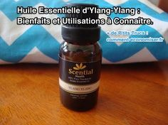 Ylang-Ylang Essential Oil: Benefits and Uses to Know. Aromatherapy Oils, Good Advice, Things To Know, Tea Tree, Plexus Products, Healthy Life, Essential Oils, Fragrance, How To Plan