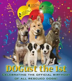 I never knew this. We have 5 rescued dogs Now I will celebrate August 1st for them