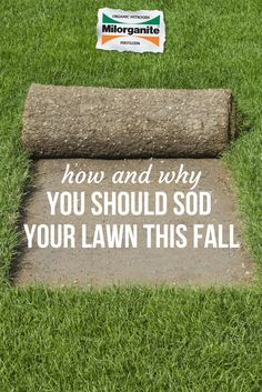 Fall is a great time for sodding small areas or your entire lawn. The temperatures are cooler so it won't dry out as quickly as in warmer weather. Add Milorganite into the top inches of soil, to help speed up development & feed the young roots.