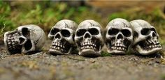 Set of 5 Skulls for Miniature Fairy Gardens