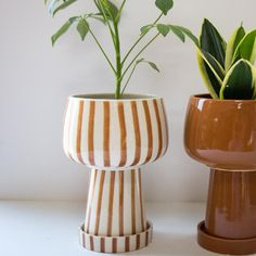 Ceramic Planter designed by Justina Blakeney® now available at Jungalow® Ceramic Flower Pots, Ceramic Planters, Indoor Planters, Diy Planters, Painted Clay Pots, Pottery Designs, Justina Blakeney, Just For You, Pottery Clay