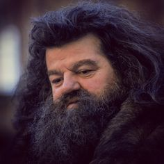 """I would trust Hagrid with my life."" - Dumbledore #HarryPotter"