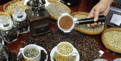 This is the reason behind the treatment in Aceh coffee