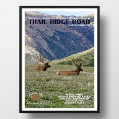 Rocky Mountain National Park Poster-Trail Ridge Road (Personalized) | Travel Poster by JustGoTravelStudios