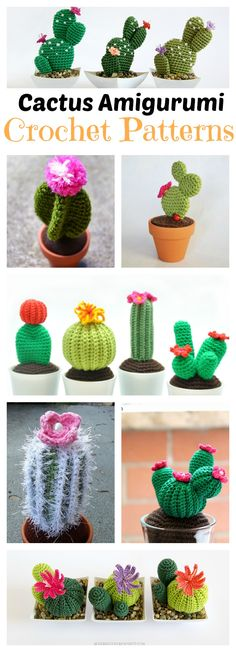 10+ Desert Cactus Amigurumi Crochet Patterns