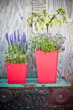 11 Gallon Loll Designs Tetra Planter in Green Recycled Planters, Outdoor Planter Boxes, Flowers In Jars, Flower Pots, Home Design Diy, Decoration, Garden Inspiration, Container Gardening, Outdoor Gardens