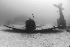 A series of incredible photographs showing more than 150 lost World War Two aircraft on th...